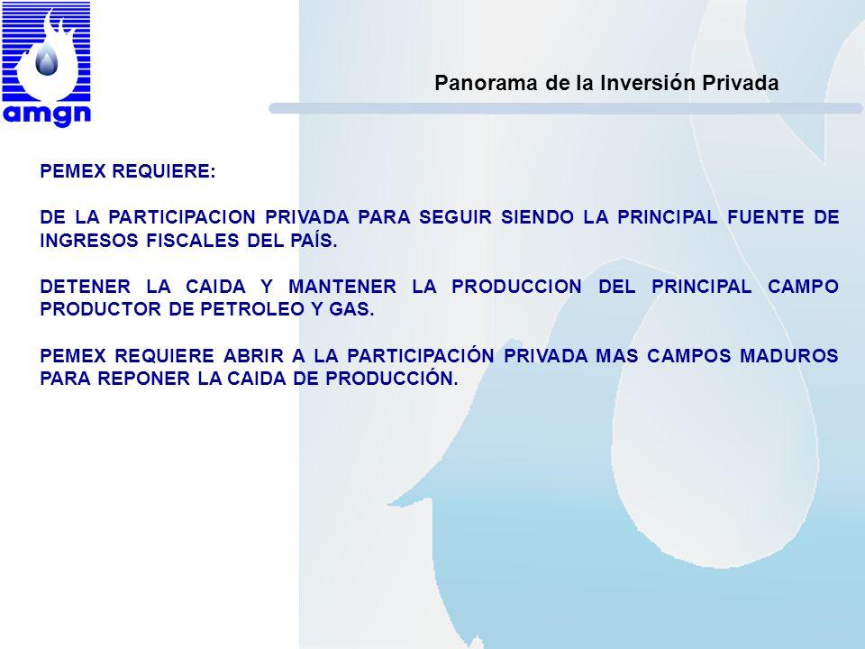 Panorama de la Inversión Privada PEMEX REQUIERE: DE LA PARTICIPACION PRIVADA PARA SEGUIR SIENDO LA PRINCIPAL FUENTE DE INGRESOS FISCALES DEL PAÍS. DET