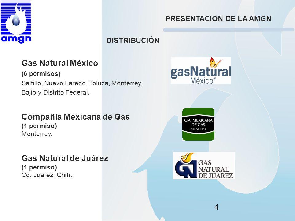 4 Gas Natural México (6 permisos) Saltillo, Nuevo Laredo, Toluca, Monterrey, Bajío y Distrito Federal. Compañía Mexicana de Gas (1 permiso) Monterrey.
