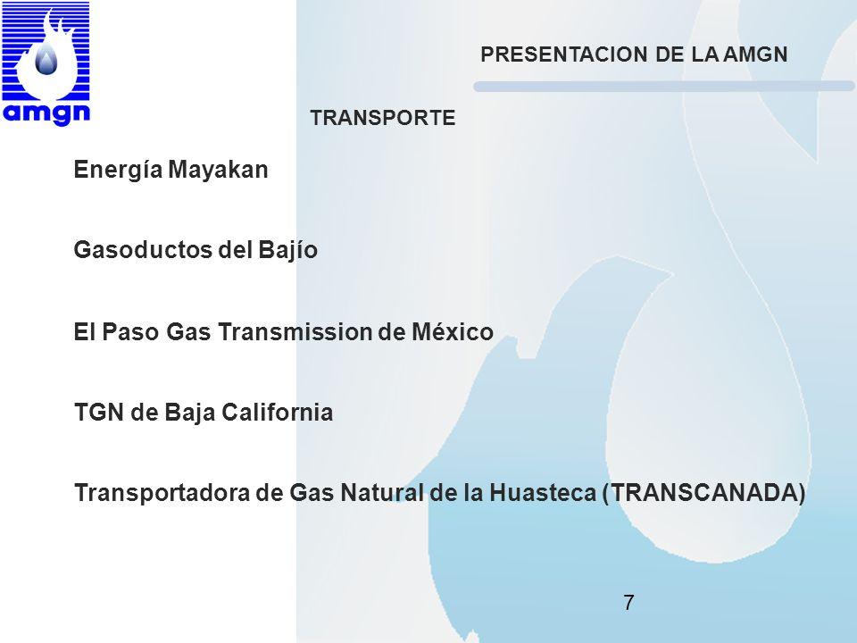 7 Energía Mayakan Gasoductos del Bajío El Paso Gas Transmission de México TGN de Baja California Transportadora de Gas Natural de la Huasteca (TRANSCA