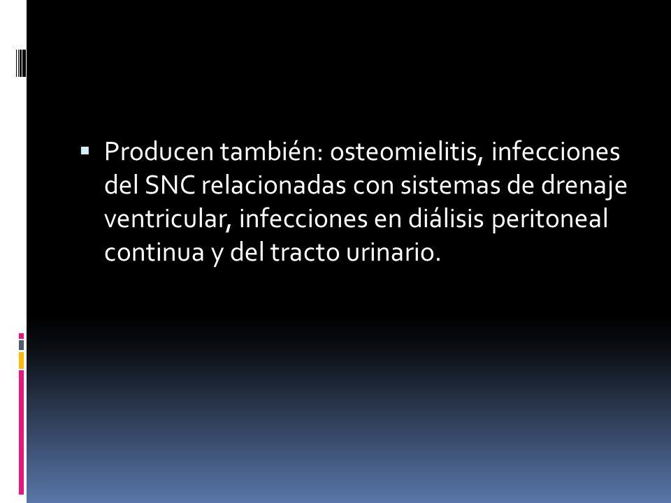 Producen también: osteomielitis, infecciones del SNC relacionadas con sistemas de drenaje ventricular, infecciones en diálisis peritoneal continua y d