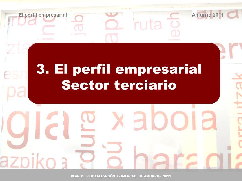 17 3. El perfil empresarial Sector terciario El perfil empresarialAmurrio 2011 PLAN DE REVITALIZACIÓN COMERCIAL DE AMURRIO 2011