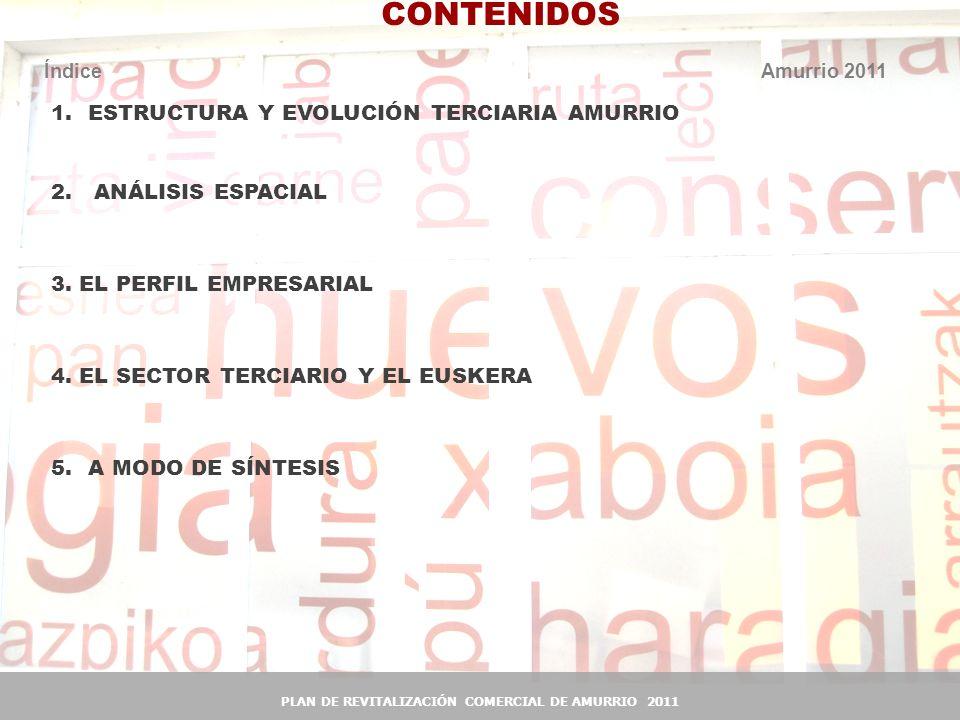 3 3 Estructura y Evolución terciaria Amurrio 1.