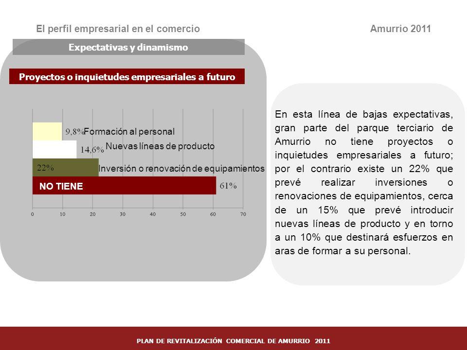 30 El perfil empresarial en el comercio En esta línea de bajas expectativas, gran parte del parque terciario de Amurrio no tiene proyectos o inquietud