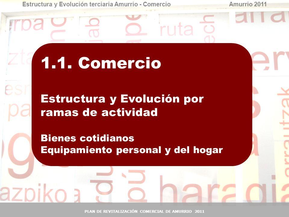 8 8 1.1. Comercio 1.1.1. Estructura y Evolución por ramas de actividad Bienes cotidianos Equipamiento personal y del hogar Estructura y Evolución terc