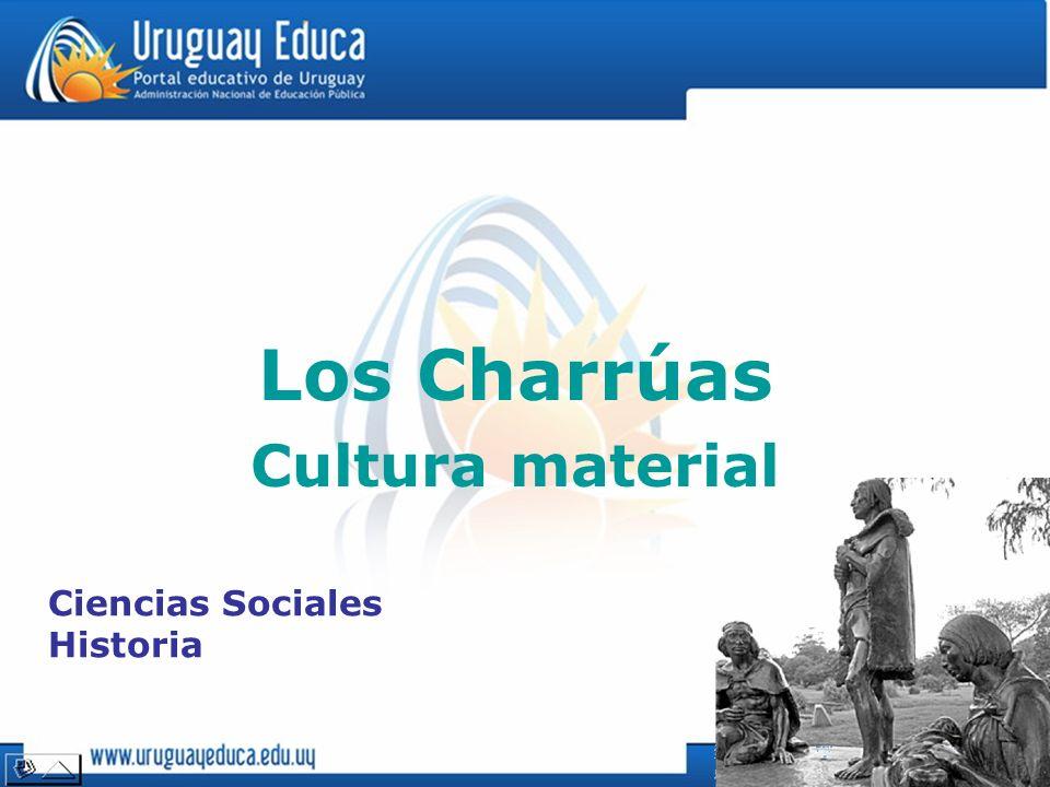 Cultura material Ciencias Sociales Historia