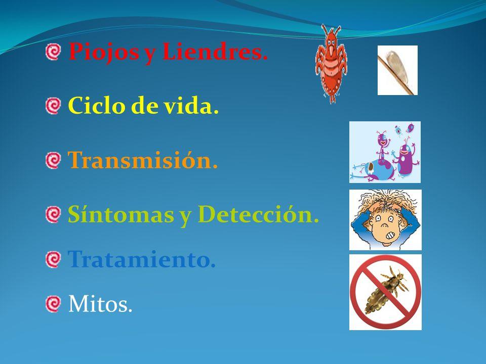 Piojos y Liendres. Ciclo de vida. Transmisión. Síntomas y Detección. Tratamiento. Mitos.