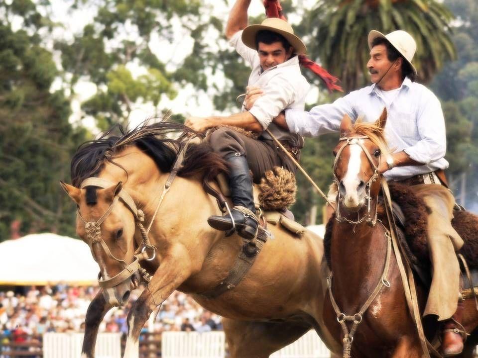JINETEADA La jineteada gaucha y doma gaucha es un deporte ecuestre característico y tradicional de Argentina y Uruguay, que integra la cultura folklórica de ese país, en particular la cultura gauchesca.