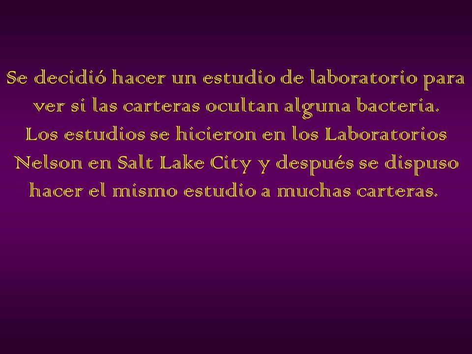 Se decidió hacer un estudio de laboratorio para ver si las carteras ocultan alguna bacteria.