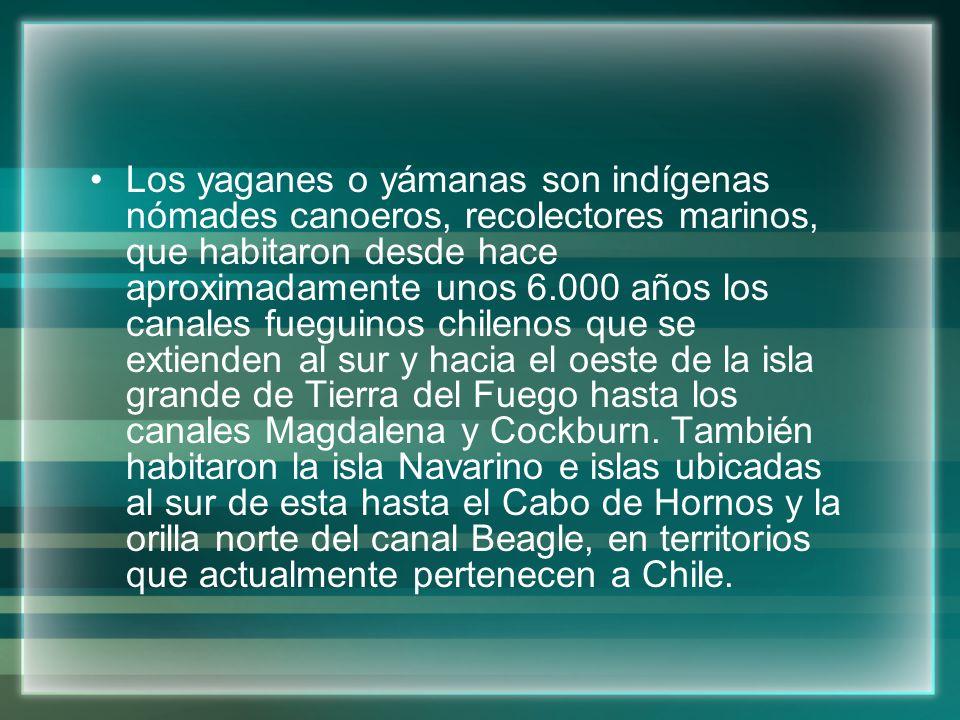 Los yaganes o yámanas son indígenas nómades canoeros, recolectores marinos, que habitaron desde hace aproximadamente unos 6.000 años los canales fuegu