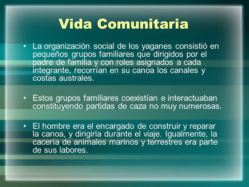 Vida Comunitaria La organización social de los yaganes consistió en pequeños grupos familiares que dirigidos por el padre de familia y con roles asign