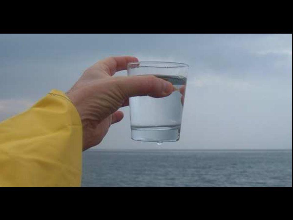 Es increíble que ni siquiera la marina, ni los cuerpos de salvamento de casi todo el mundo no sepan que el agua de mar es potable y nutritiva. Como si