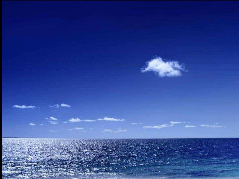 Al octavo día comenta Gabo que Luis le dijo: Completamente agotado me incliné sobre la borda y tomé varios sorbos de agua de mar. Ahora sé que es conv