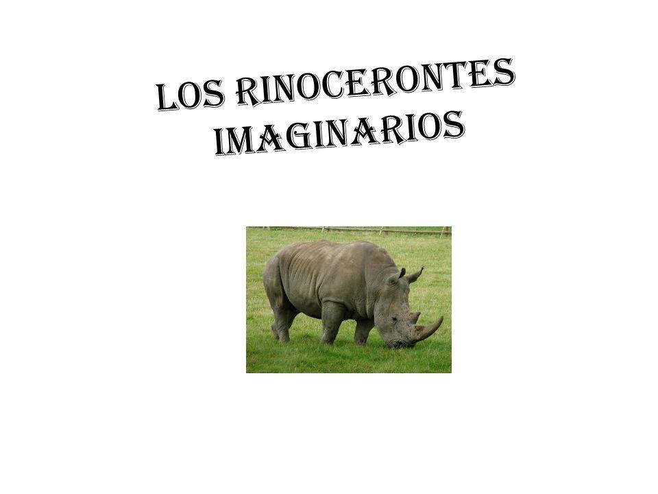 Ceratotherium simum El gran rinoceronte se detiene. Alza la cabeza. Recula un poco. Gira en redondo y dispara su pieza de artillería. Embiste como ari