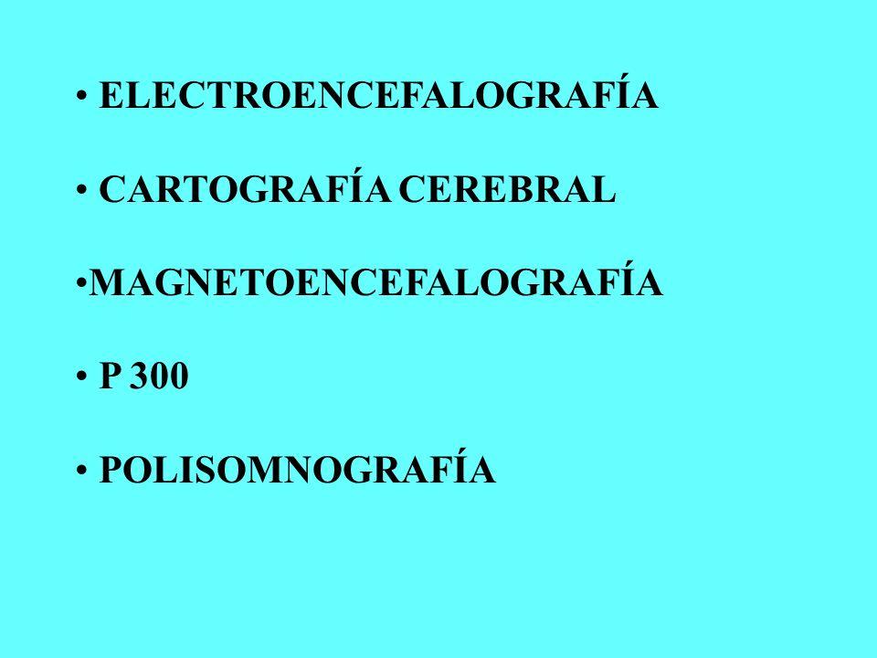 La Electroencefalografía consiste en el registro de la actividad eléctrica cerebral (neuronas, dendritas, axones).
