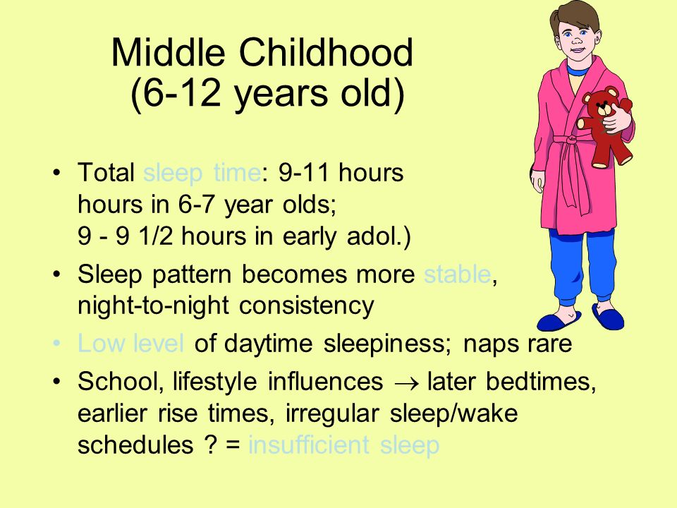 Middle Childhood (6-12 years old) Total sleep time: 9-11 hours (10 - 11 hours in 6-7 year olds; 9 - 9 1/2 hours in early adol.) Sleep pattern becomes more stable, night-to-night consistency Low level of daytime sleepiness; naps rare School, lifestyle influences later bedtimes, earlier rise times, irregular sleep/wake schedules .