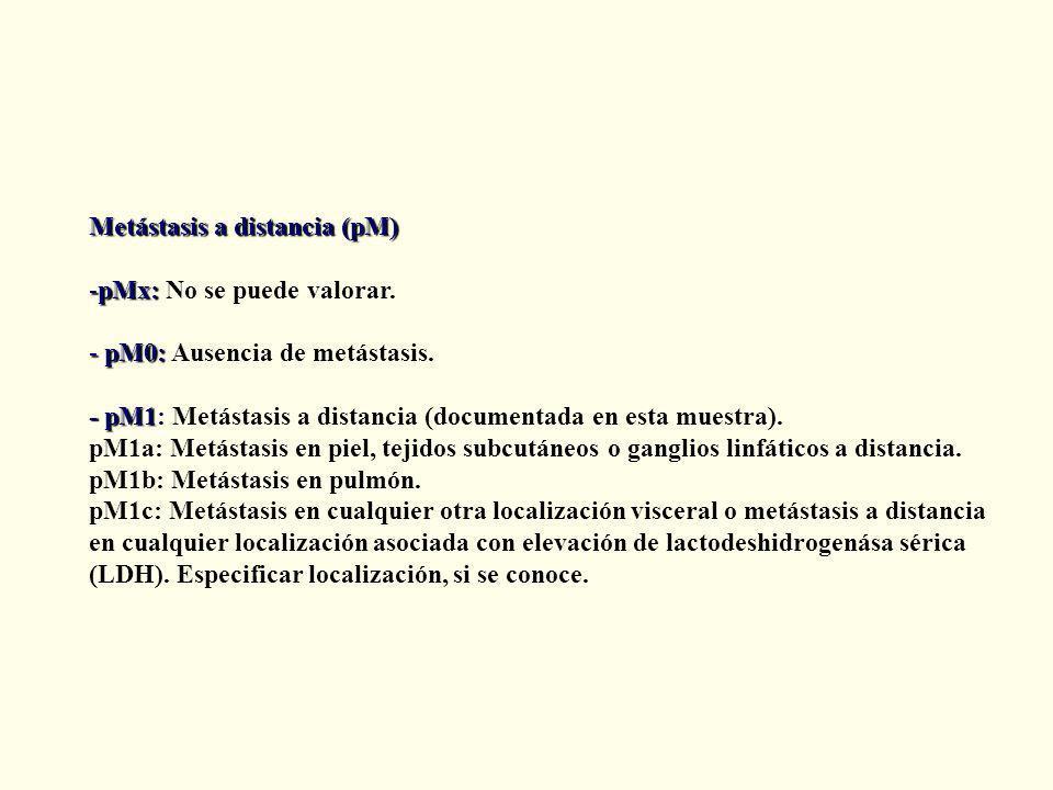 Metástasis a distancia (pM) -pMx: -pMx: No se puede valorar.