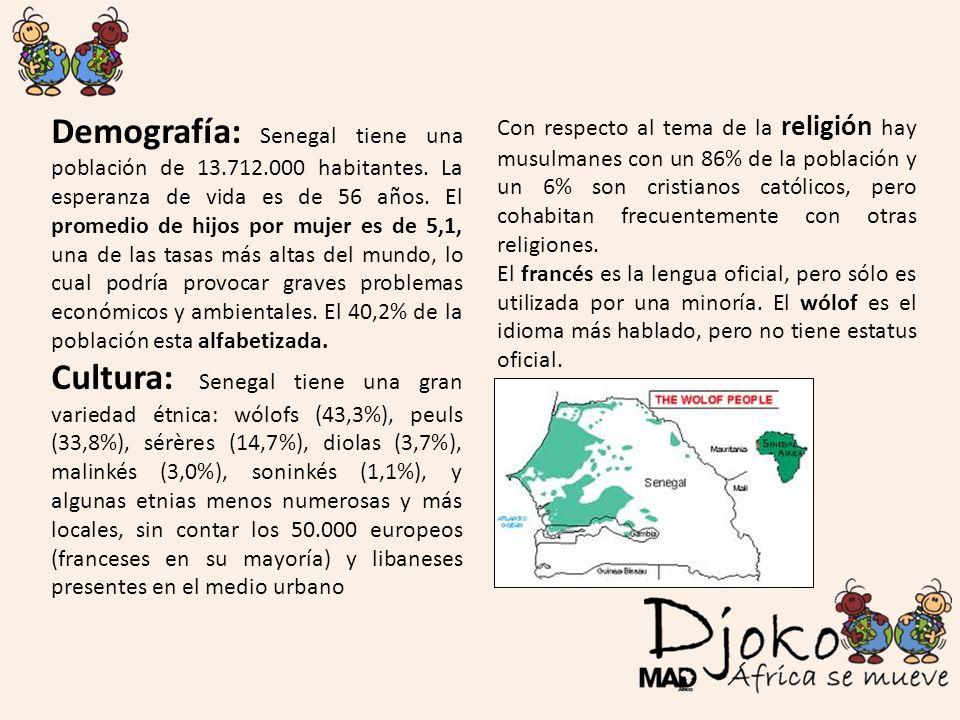 Demografía: Senegal tiene una población de 13.712.000 habitantes. La esperanza de vida es de 56 años. El promedio de hijos por mujer es de 5,1, una de
