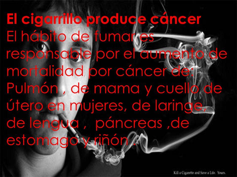 El cigarrillo produce cáncer El hábito de fumar es responsable por el aumento de mortalidad por cáncer de: Pulmón, de mama y cuello de útero en mujeres, de laringe, de lengua, páncreas,de estomago y riñón.