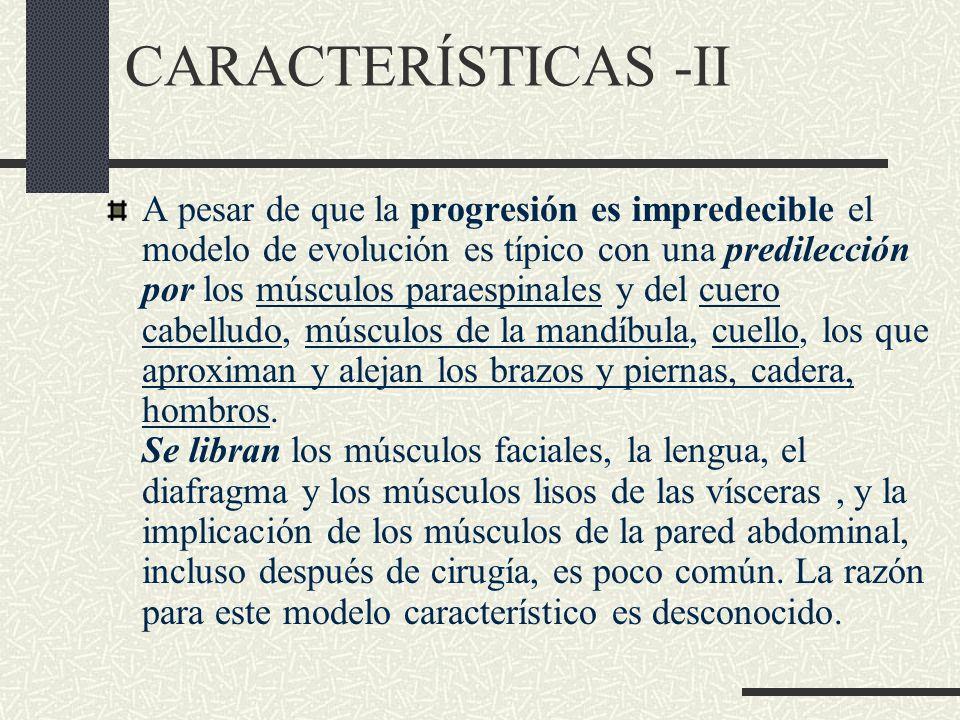 CARACTERÍSTICAS -II A pesar de que la progresión es impredecible el modelo de evolución es típico con una predilección por los músculos paraespinales