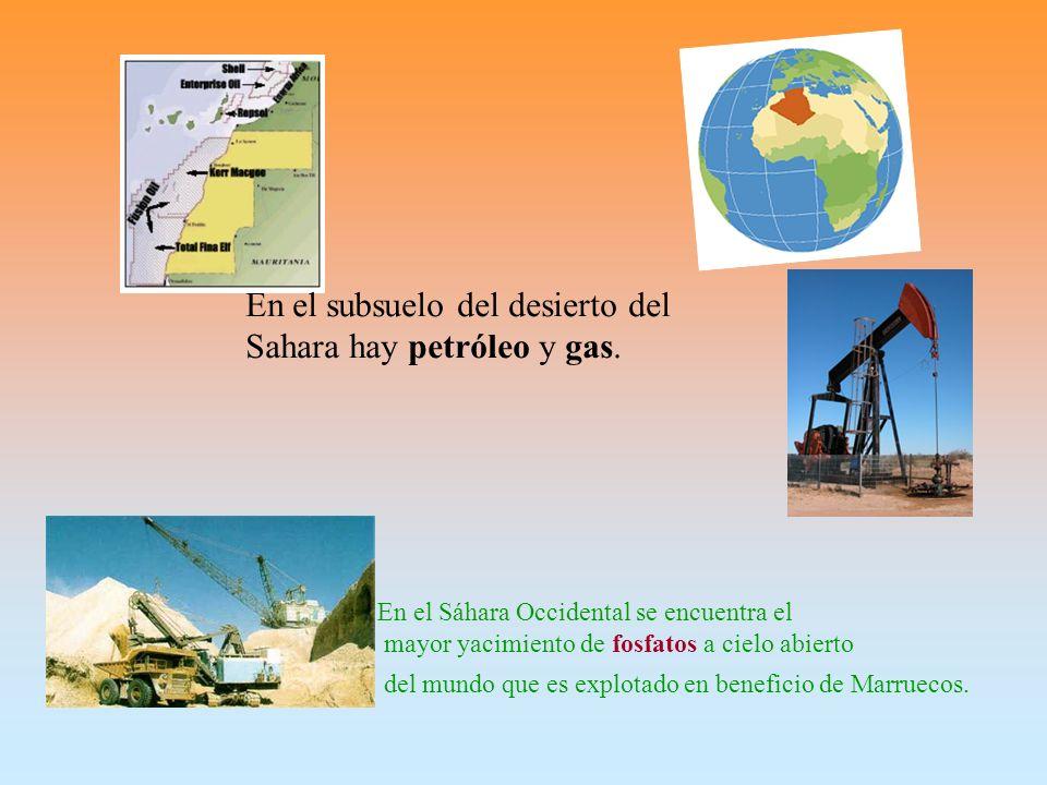 En el subsuelo del desierto del Sahara hay petróleo y gas.