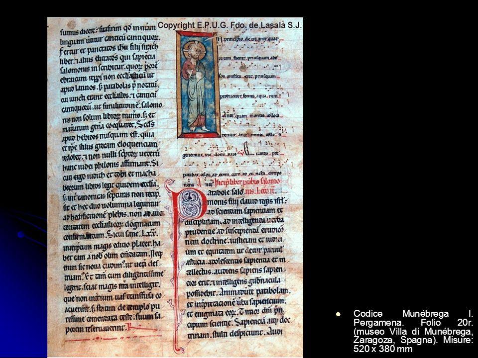 Codice Munébrega I.Pergamena. Folio 20r. (museo Villa di Munébrega, Zaragoza, Spagna).