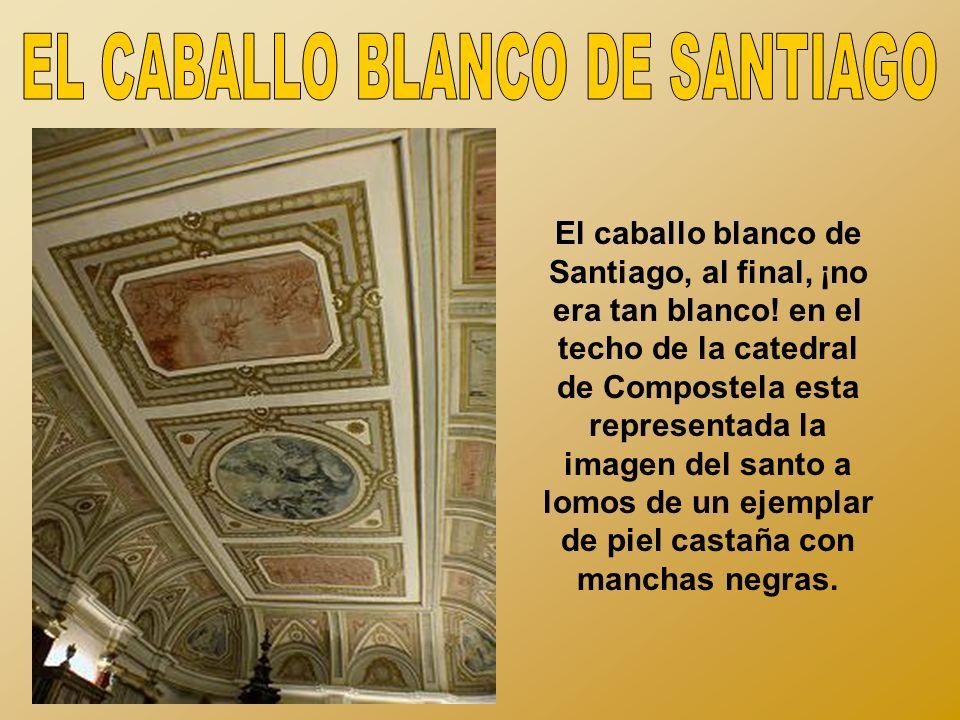 El caballo blanco de Santiago, al final, ¡no era tan blanco.