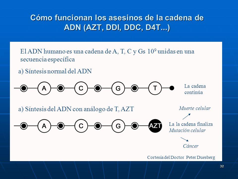 32 Cómo funcionan los asesinos de la cadena de ADN (AZT, DDI, DDC, D4T...) a) Síntesis del ADN con análogo de T, AZT Cortesía del Doctor Peter Duesber
