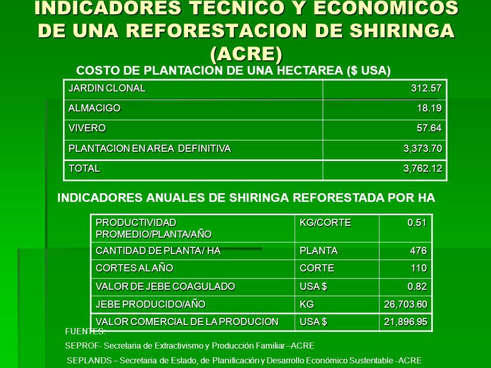 INDICADORES TECNICO Y ECONOMICOS DE UNA REFORESTACION DE SHIRINGA (ACRE) JARDIN CLONAL 312.57 ALMACIGO18.19 VIVERO57.64 PLANTACION EN AREA DEFINITIVA