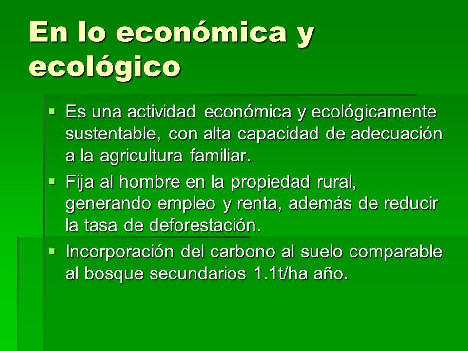 En lo económica y ecológico Es una actividad económica y ecológicamente sustentable, con alta capacidad de adecuación a la agricultura familiar. Es un