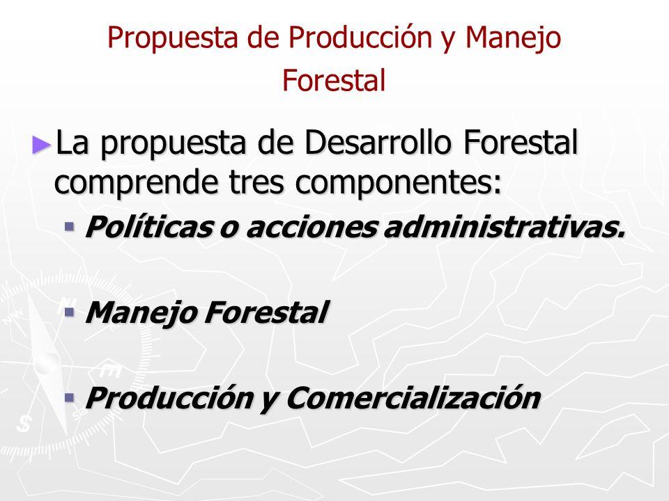 Propuesta de Producción y Manejo Forestal La propuesta de Desarrollo Forestal comprende tres componentes: La propuesta de Desarrollo Forestal comprende tres componentes: Políticas o acciones administrativas.