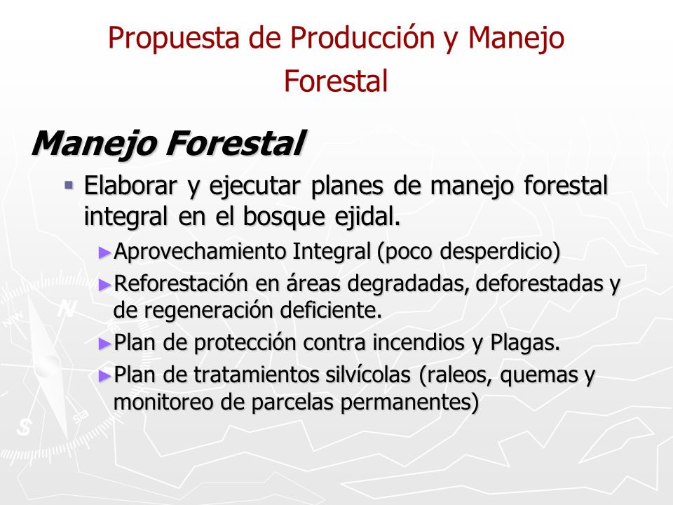 Propuesta de Producción y Manejo Forestal Manejo Forestal Elaborar y ejecutar planes de manejo forestal integral en el bosque ejidal. Elaborar y ejecu