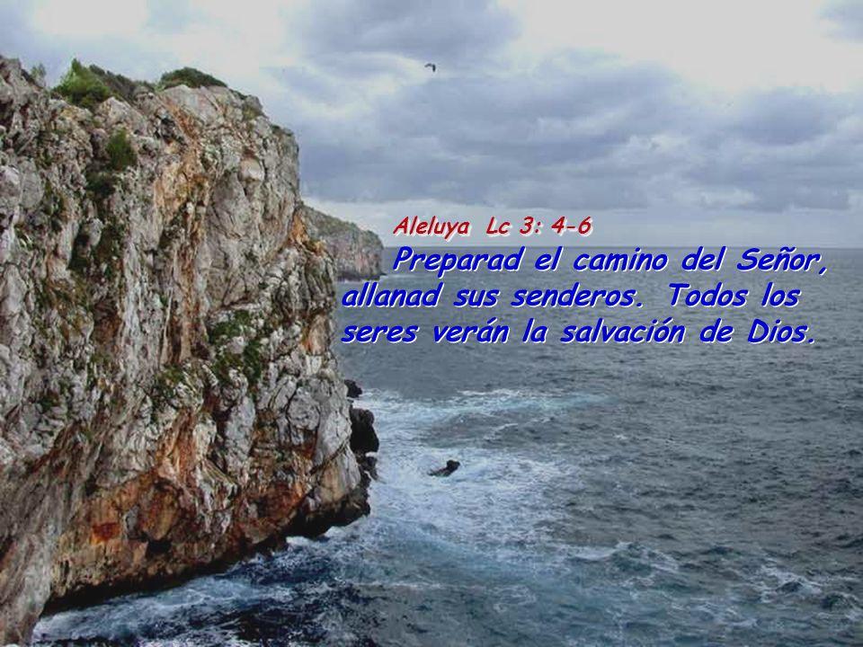 Aleluya Lc 3: 4-6 Preparad el camino del Señor, allanad sus senderos.