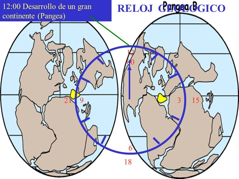 12 00 9 3 6 15 18 21 12:00 Desarrollo de un gran continente (Pangea) RELOJ GEOLOGICO
