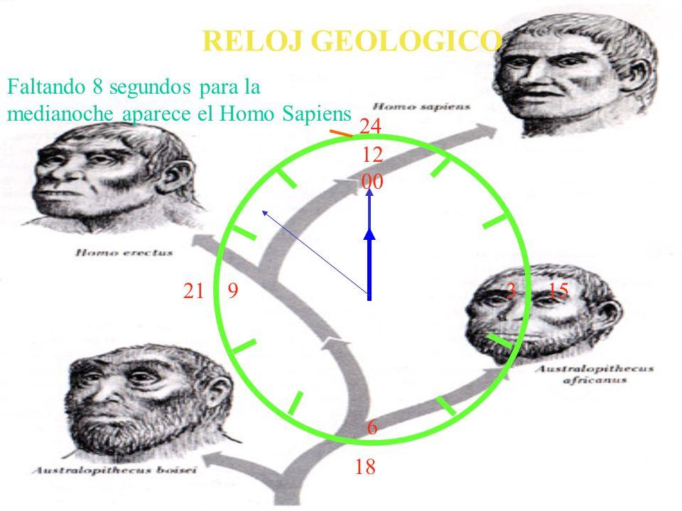 12 00 9 3 6 15 18 21 24 RELOJ GEOLOGICO Faltando 8 segundos para la medianoche aparece el Homo Sapiens