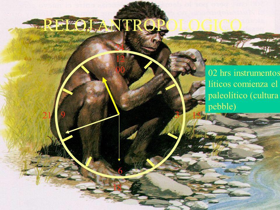 12 00 9 3 6 15 18 21 24 02 hrs instrumentos líticos comienza el paleolítico (cultura pebble) RELOJ ANTROPOLOGICO