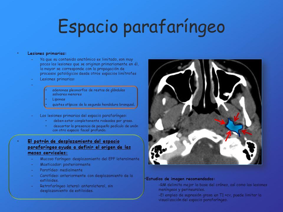 Lesiones primarias: –Ya que su contenido anatómico es limitado, son muy pocas las lesiones que se originan primariamente en él, la mayor se correspond