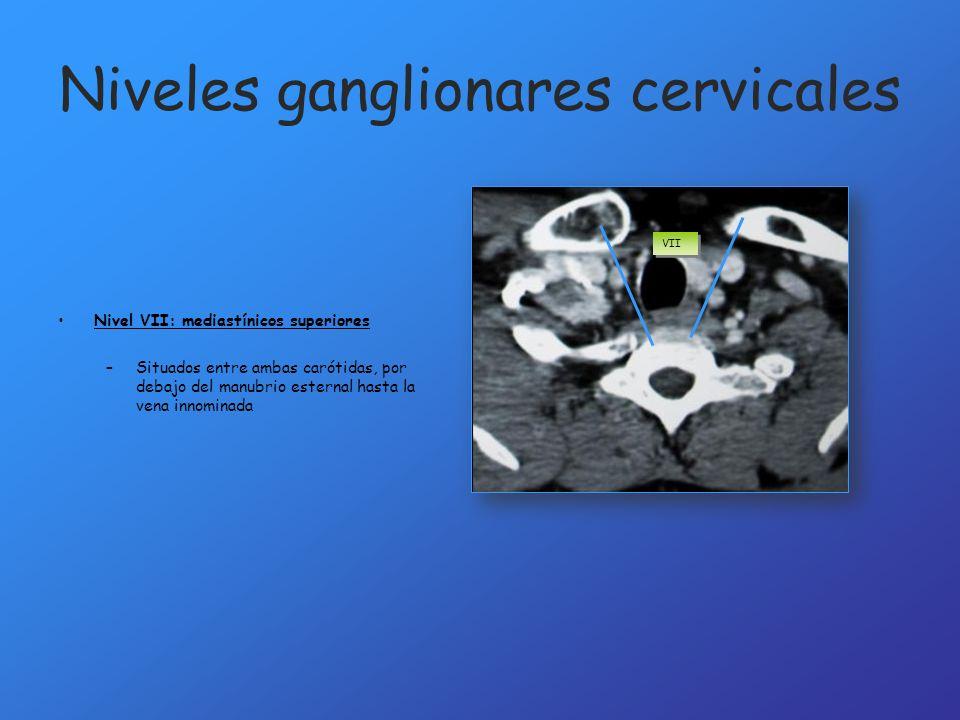 Niveles ganglionares cervicales Nivel VII: mediastínicos superiores –Situados entre ambas carótidas, por debajo del manubrio esternal hasta la vena in
