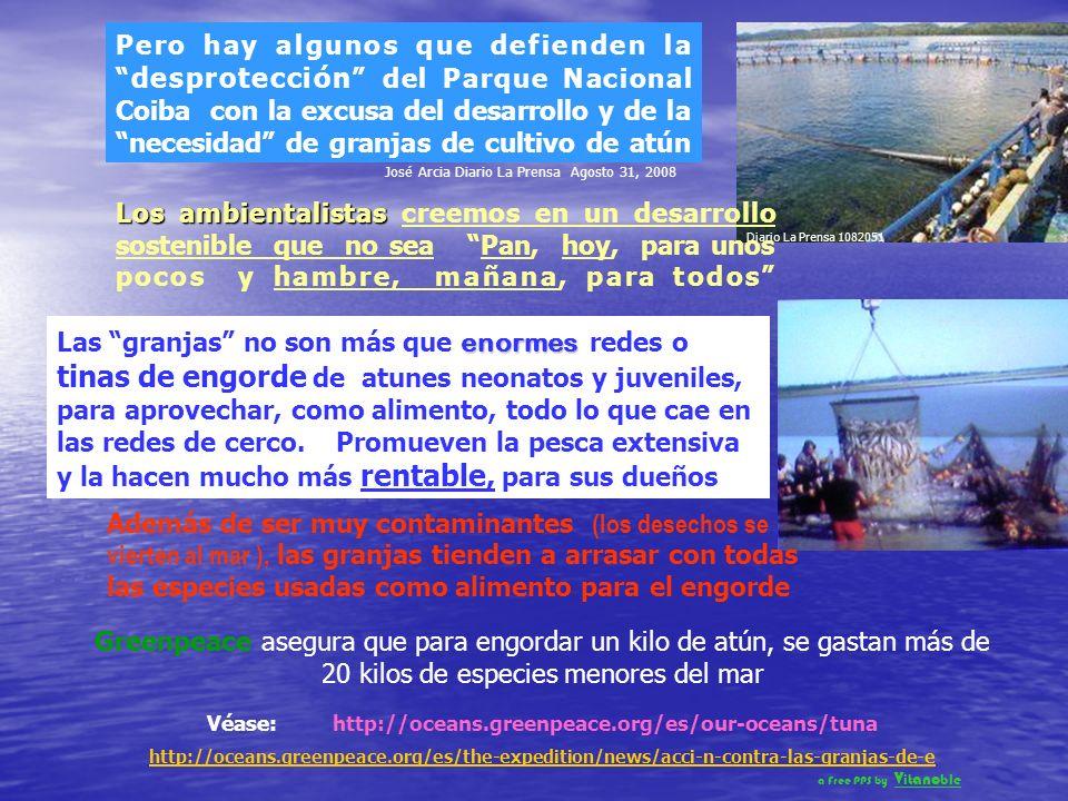El Presidente Torrijos y la Comisión de Población, Ambiente y Desarrollo de la Asamblea, han prometido derogar el artículo que levantó la prohibición, luego de una amplia consulta pública que harán entre todos los interesados Leslie Marín Lascano, abogado del CIAM, expresó que:.