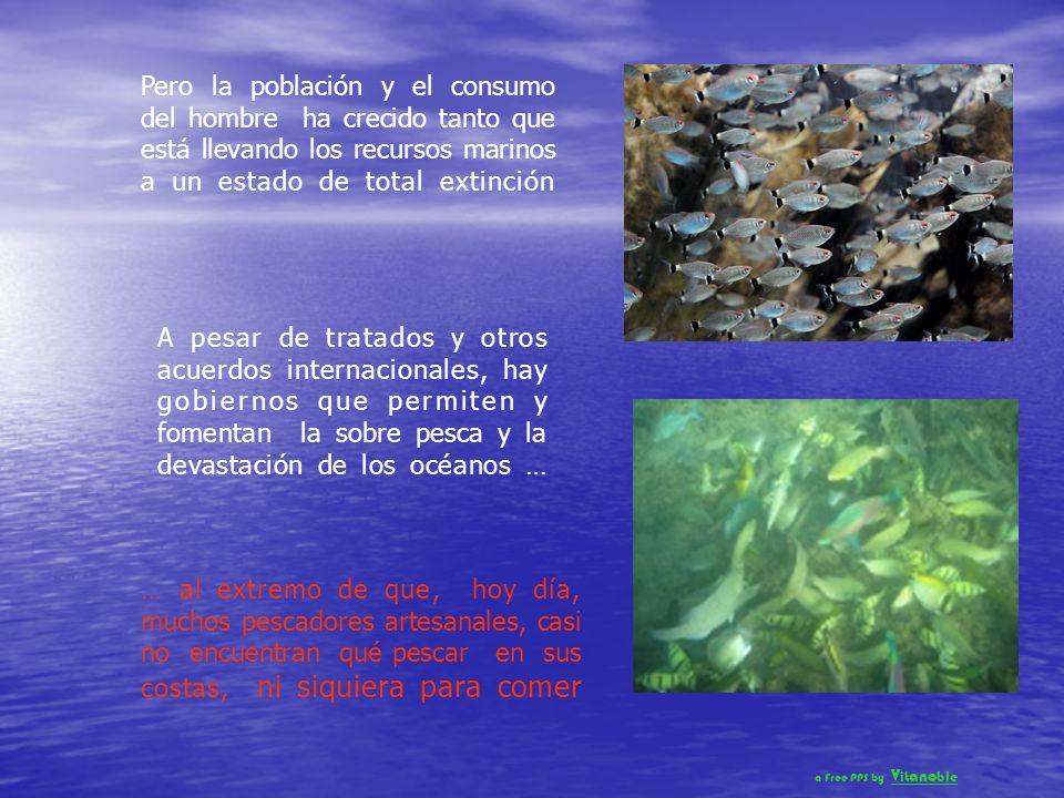 Desde la prehistoria, los grupos humanos se han asentado y desarrollado al lado de los océanos Desde los primitivos pescadores, hasta las grandes civi