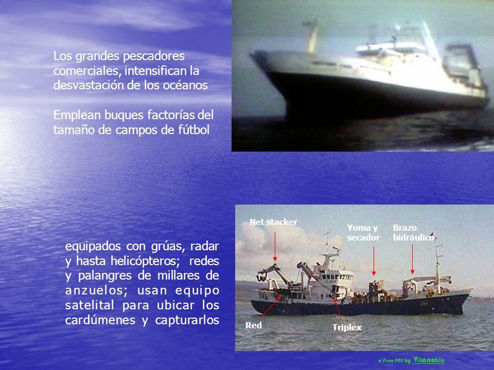 Pero la población y el consumo del hombre ha crecido tanto que está llevando los recursos marinos a un estado de total extinción A pesar de tratados y