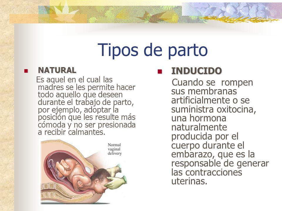 Trabajo de Parto El trabajo de parto suele dividirse en trabajo de parto verdadero y falso. El trabajo de parto falso es bastante común al final del e
