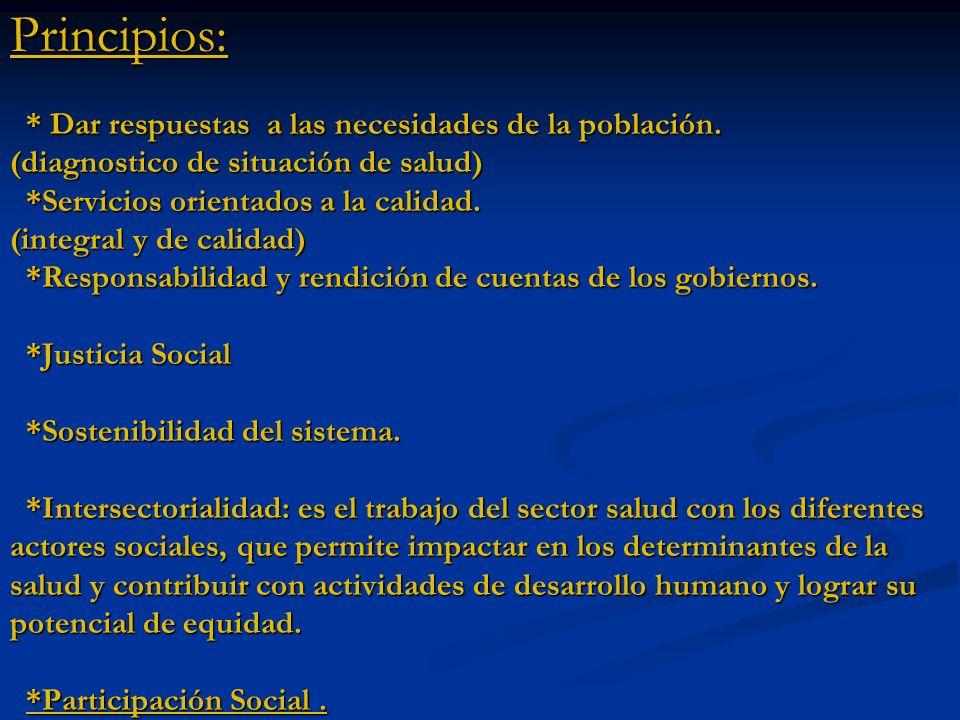 Principios: * Dar respuestas a las necesidades de la población. (diagnostico de situación de salud) *Servicios orientados a la calidad. (integral y de