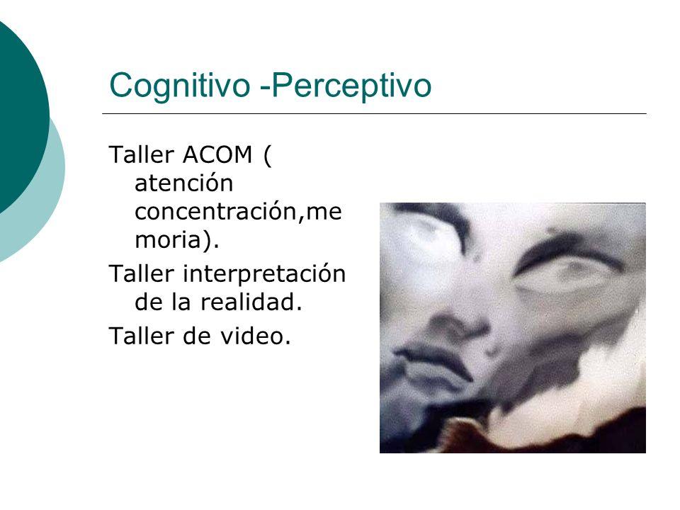 Cognitivo -Perceptivo Taller ACOM ( atención concentración,me moria). Taller interpretación de la realidad. Taller de video.