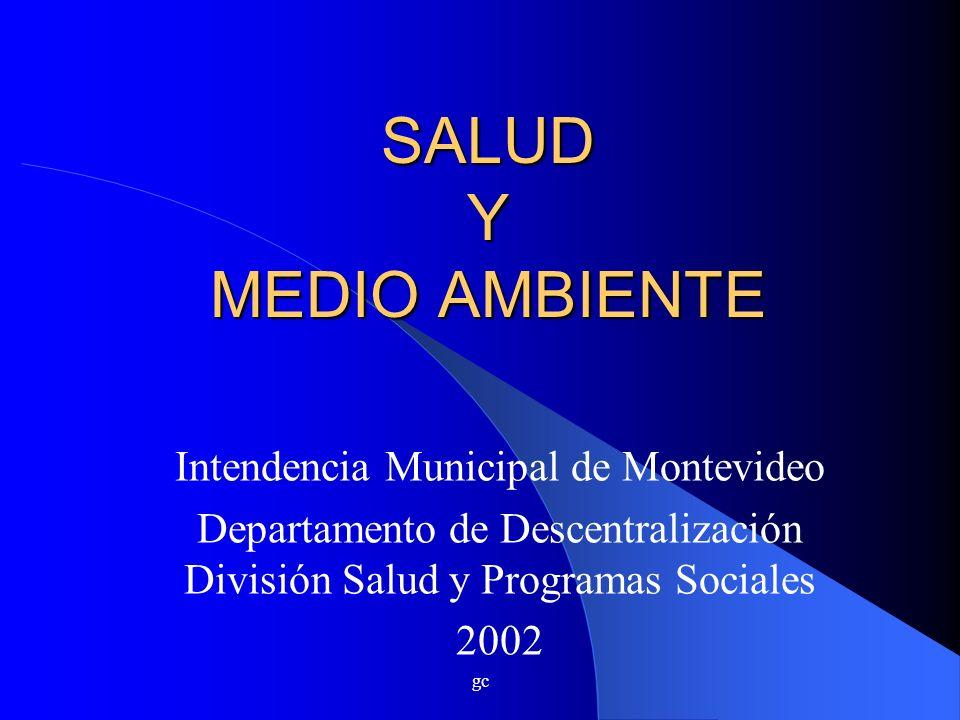 gc SALUD Y MEDIO AMBIENTE Intendencia Municipal de Montevideo Departamento de Descentralización División Salud y Programas Sociales 2002