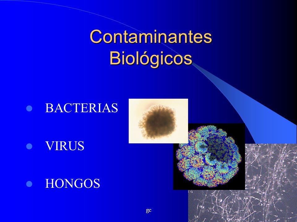 gc Contaminantes Biológicos BACTERIAS VIRUS HONGOS