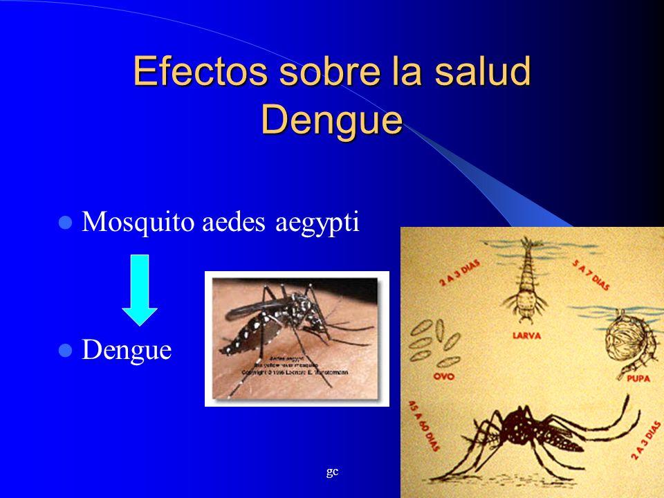 gc Efectos sobre la salud Dengue Mosquito aedes aegypti Dengue