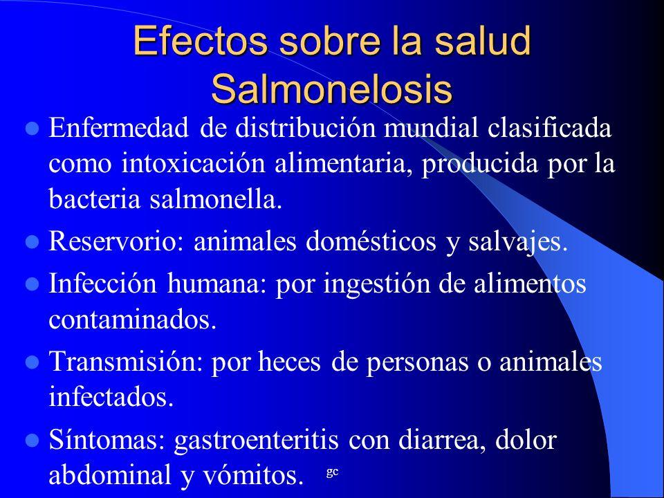 gc Efectos sobre la salud Salmonelosis Enfermedad de distribución mundial clasificada como intoxicación alimentaria, producida por la bacteria salmone