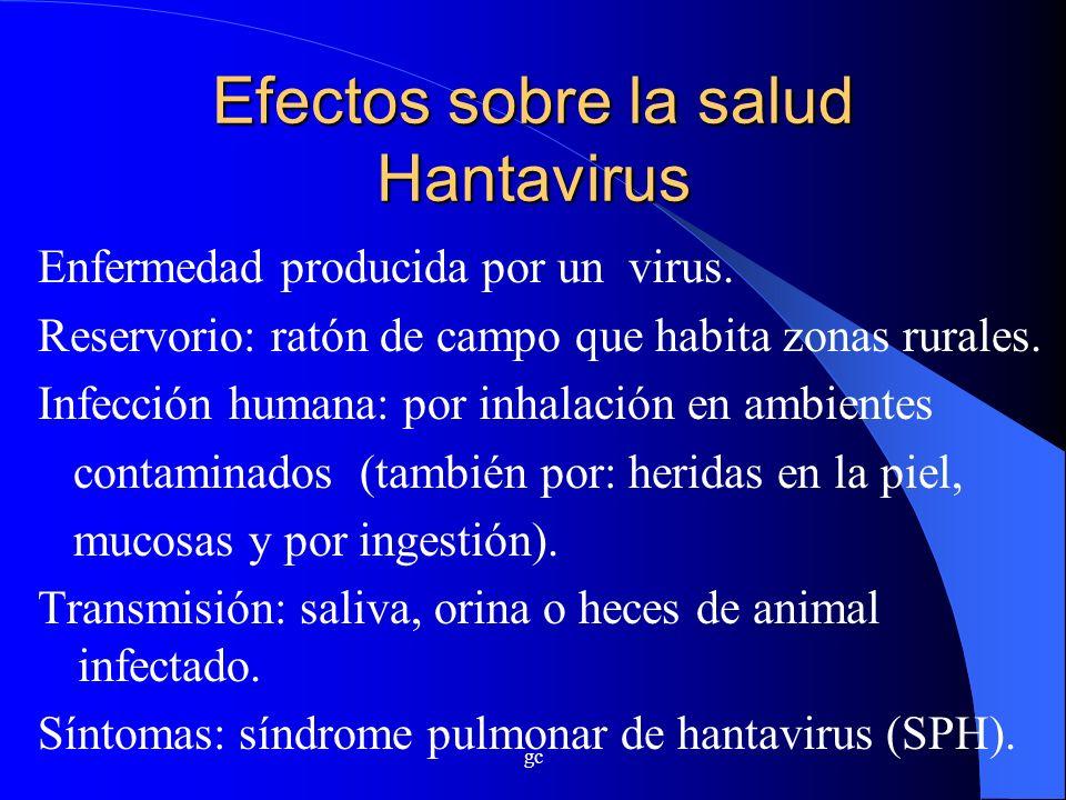 gc Efectos sobre la salud Hantavirus Enfermedad producida por un virus. Reservorio: ratón de campo que habita zonas rurales. Infección humana: por inh