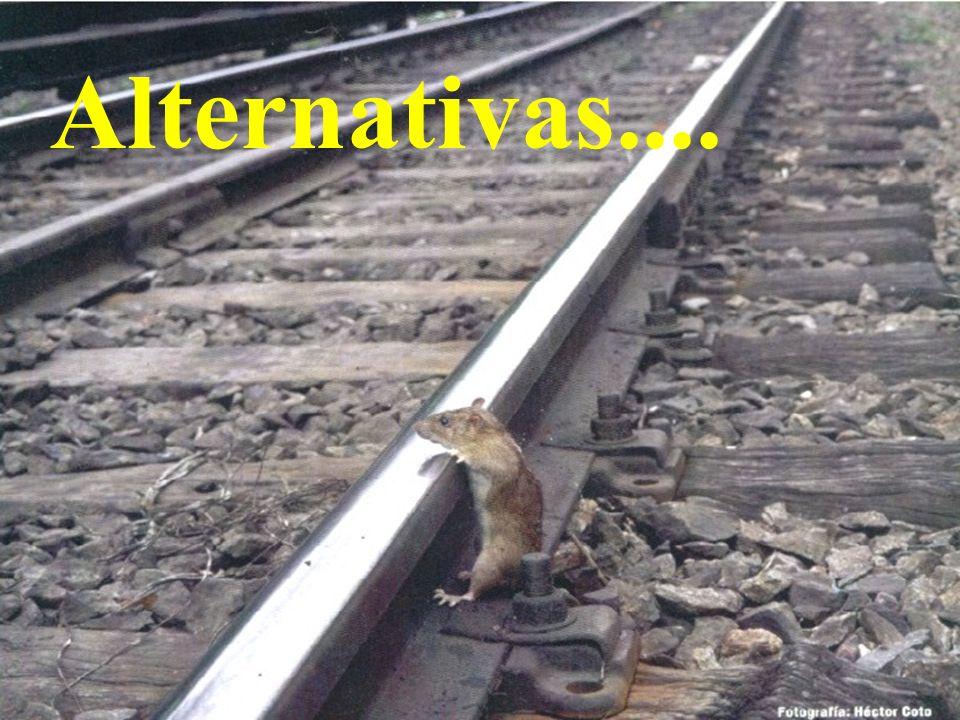gc Alternativas....