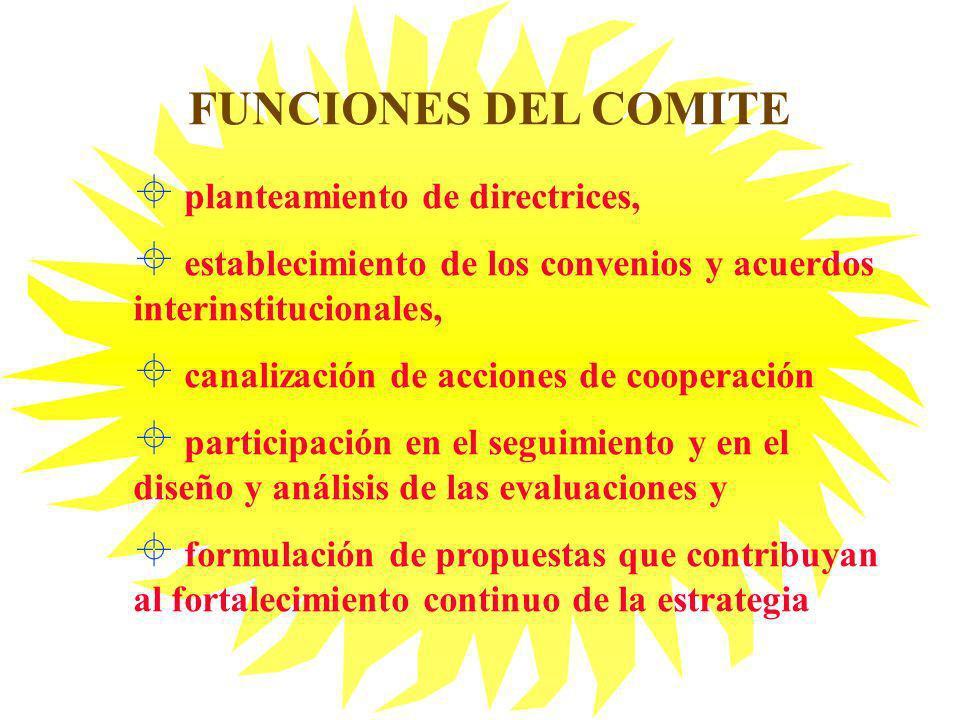 ± planteamiento de directrices, ± establecimiento de los convenios y acuerdos interinstitucionales, ± canalización de acciones de cooperación ± partic